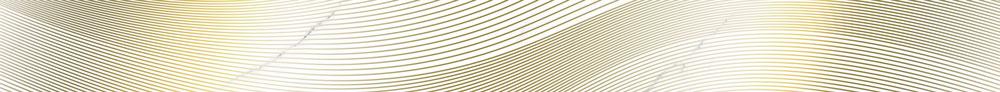 Бордюр настенный (67х740х10) Vivienne