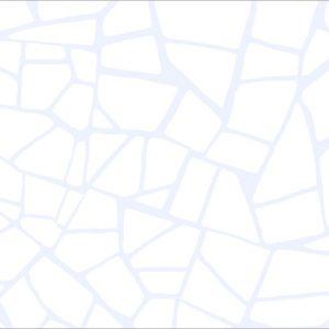 Smalta White WT9SML00 Плитка настенная 249*500*7.5